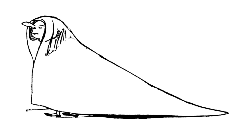 Edward_Lear_More_Nonsense_03