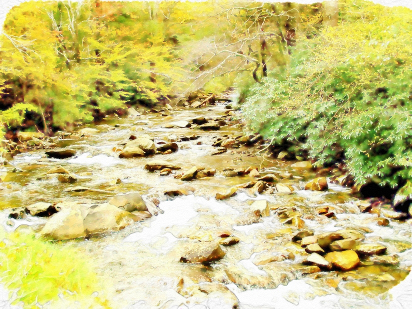 the brook scenic-787617_1920