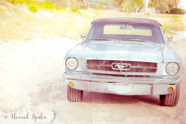 ford watercolor.jpg